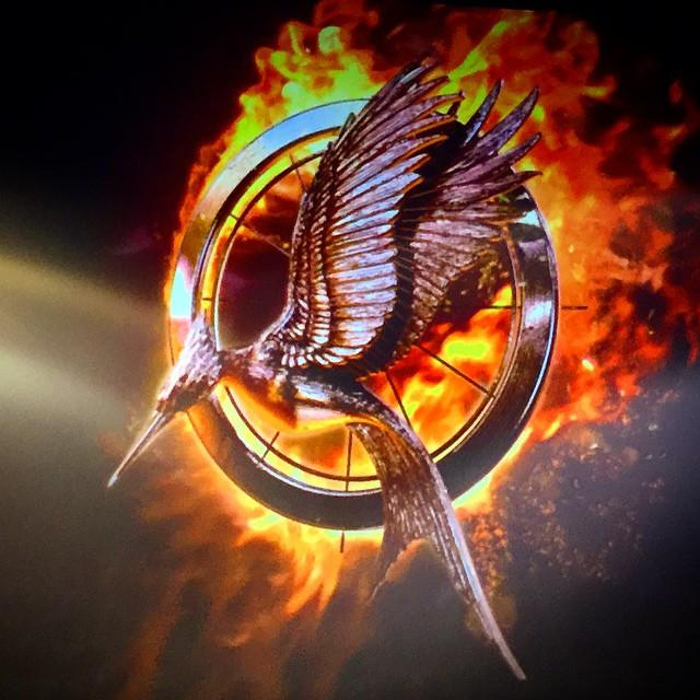 """Hunger Games: Mockingjay Part 1"" soars into theaters"