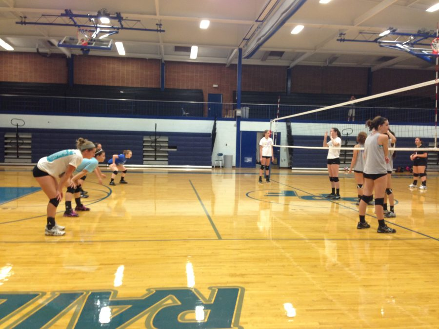 Fall+Sports+Preview%3A+Girl%26%23039%3Bs+Volleyball