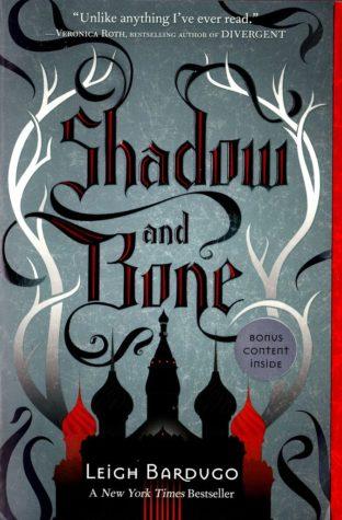 Shadow and Bone is the YA fantasy we didn